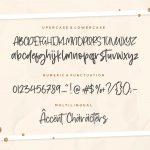 Austrian Modern Calligraphy Font6