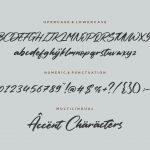 Columbian Modern Handwritten Font6