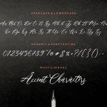 Fallout Modern Calligraphy Font6