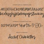 Memphis River Modern Handwritten Font6