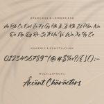 Oleandro Modern Calligraphy Font6