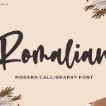 Romalian Modern Calligraphy Font1