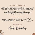 Romalian Modern Calligraphy Font6