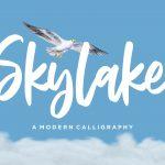 Skylake Modern Calligraphy Font1