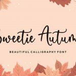 Sweetie Autumn Beautiful Calligraphy Font1