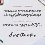 Yorkside Modern Calligraphy Font6