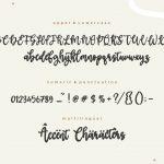 Boldman Handwritten Script Font6