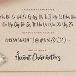 Miguelito Modern Handwritten Font6
